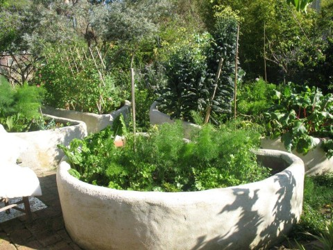 Event: Open Edible Gardens  Sat. Nov. 12th / Sun. Nov. 13th 2011