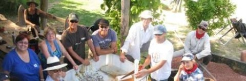 Build Your Own Aquaponics System July 29th