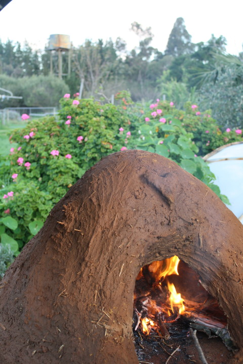 Cob oven with Clay from the dam