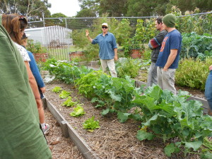 One of the many inspired, hands on sessions given by Jamie McCall from Burnside Organic Farm