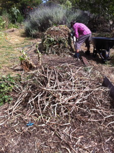 building compost piles on the dry beds during summer