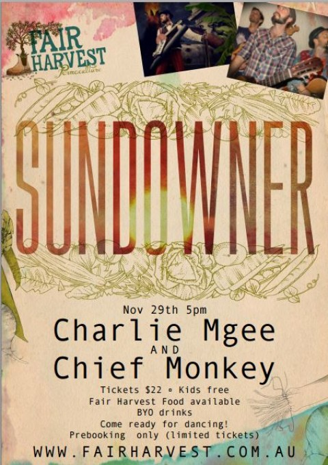 Sundowner with Charlie Mgee and Chief Monkey Sunday 29th November 2015