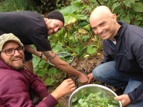 January Permaculture Design Certificate 2016